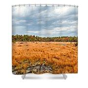 Laurel Summit State Park Bog Shower Curtain