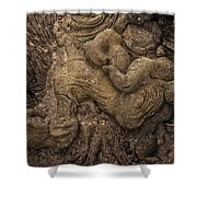 Lava Mother With Child On Galapagos Islands Shower Curtain