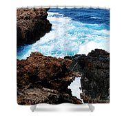 Lava Rock On Aruban Coast Shower Curtain