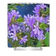 Lavendar Melody Shower Curtain
