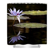 Lavendar Reflections In The Lake Shower Curtain