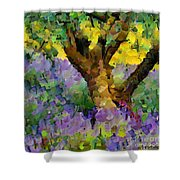 Lavender And Olive Tree Shower Curtain