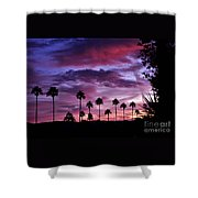 Lavender And Pink Shower Curtain