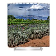 Lavender And Sunflowers Shower Curtain