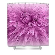 Lavender Beauty Shower Curtain