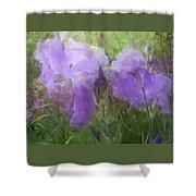 Lavender Blue Iris Garden Shower Curtain