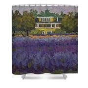 Lavender Farm On Vashon Island Shower Curtain