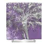Lavender Glow Palm Tree Myakka River State Park Usa Shower Curtain