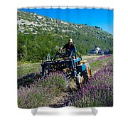 Lavender Harvest In Provence Shower Curtain