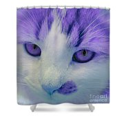 Lavender Kitten Shower Curtain