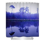Lavender Morning Shower Curtain
