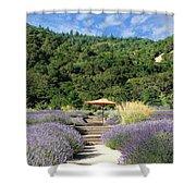 Lavender Path Shower Curtain