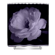 Lavender Perfection Shower Curtain