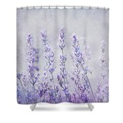 Lavender Romance Shower Curtain