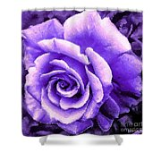 Lavender Rose With Brushstrokes Shower Curtain