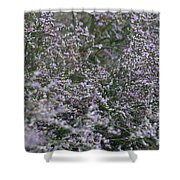 Lavender Silver Lining Shower Curtain