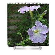 Lavender Whisper Shower Curtain