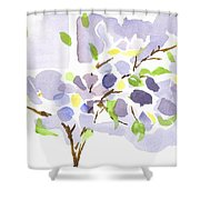 Lavender With Missouri Dogwood In The Window Shower Curtain
