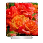 Layer Art Flowers Roses Shower Curtain
