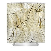 Layered Leaves Shower Curtain by Kelly Redinger