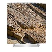Layered Rock Shower Curtain