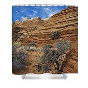 Layered Sandstone Shower Curtain