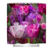 Layers Of Tulips Shower Curtain