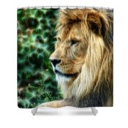 Lazy Boy Day Dream At The Buffalo Zoo Shower Curtain