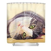 Lazy Kitty Shower Curtain