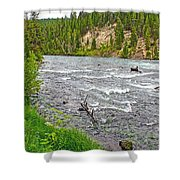 Le Hardy Rapids Of Yellowstone River In Yellowstone River In Yellowstone National Park-wyoming   Shower Curtain
