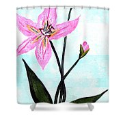 Le Reve  The Dream 1 Shower Curtain