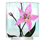 Le Reve The Dream 2 Shower Curtain