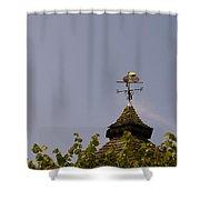 Le Tour Weather Vane Shower Curtain