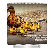 Lead By Example Shower Curtain