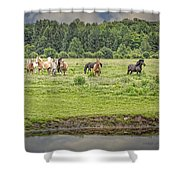 Leadership And Respect Shower Curtain