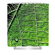 Leaf Abstract - Macro Photography Shower Curtain