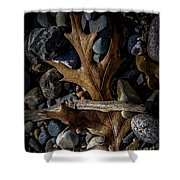 Leaf And Stones Shower Curtain