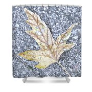 Leaf Shower Curtain