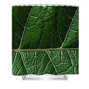Leaf Close Up Shower Curtain