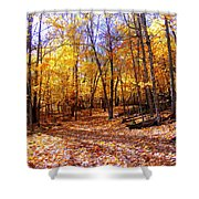 Leaf Covered Trail Shower Curtain