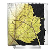 Leaf Shower Curtain by Elena Yakubovich