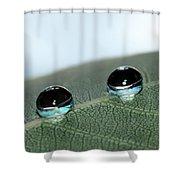 Leaf Jewels Shower Curtain