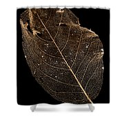 Leaf Lace Shower Curtain