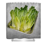 Leaf Lettuce Shower Curtain by Andee Design