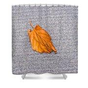Leaf On Granite 1 Shower Curtain