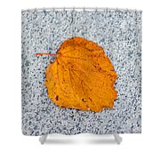 Leaf On Granite 10 - Square Shower Curtain