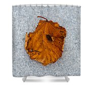 Leaf On Granite 11 - Square Shower Curtain