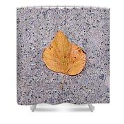 Leaf On Granite 2 - Square Shower Curtain