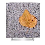 Leaf On Granite 2 Shower Curtain