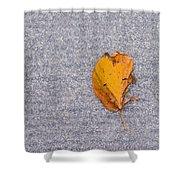 Leaf On Granite 3 Shower Curtain